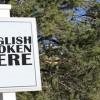 Kako uspješno učiti engleski jezik?